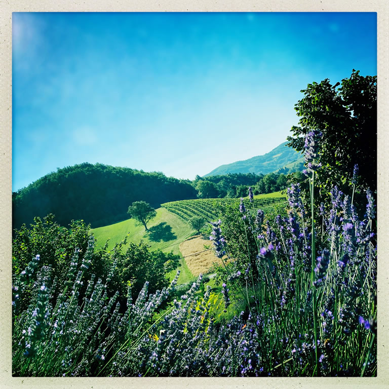 piemont landschaft